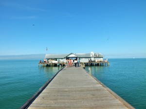City Pier AMI
